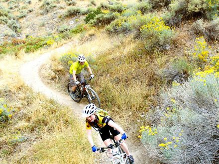 Ogden Mountain Biking